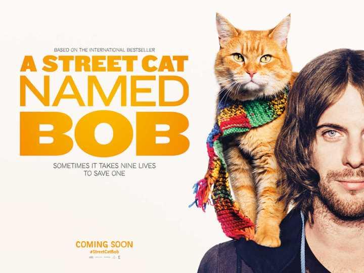 Dica de filme: A Street Cat NamedBob