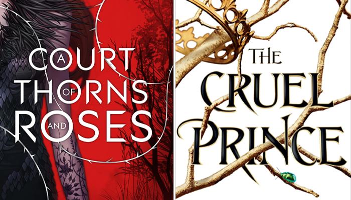 Se você gostou de A Court of Thorns and Roses vai gostar de The CruelPrince